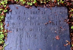 Here is interred JENNY the daughter of RICHARD TONGE of Farnworth May 14th 1780 in the 4th year of her age